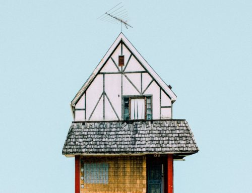 Roof Maintenance and Care: The Basics