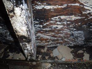 structural framing damage
