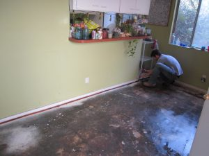 water damage expert dealing with residential water damage