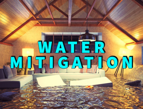 Expert Water Mitigation: 5 Effective Steps For Success