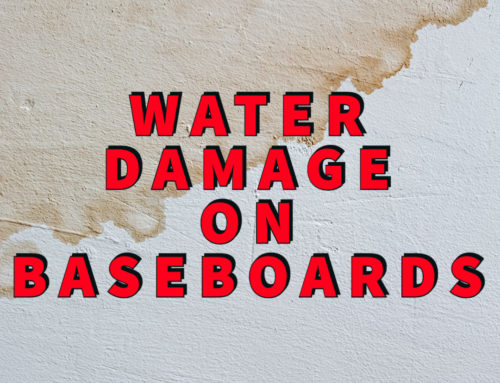 Water Damage on Baseboards? 3 Easy To Spot Warning Signs