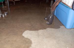 water creeping onto concrete floor
